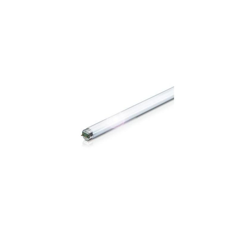 Osram Lumilux T8 G13 L 15 W//840 Lampada fluorescente